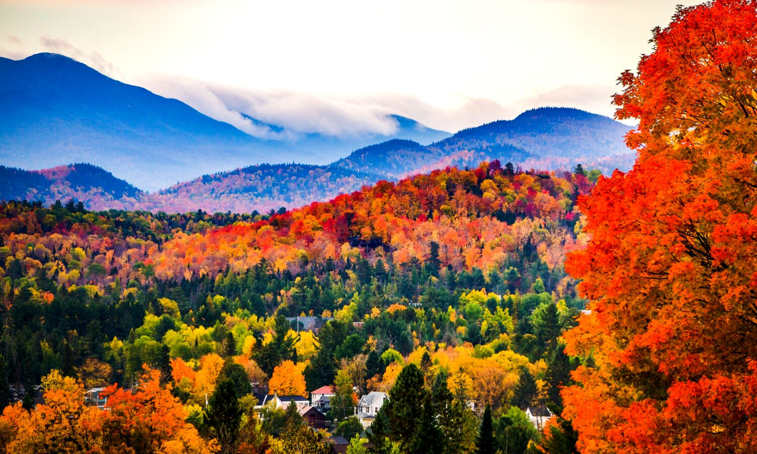 Photograph of a misty mountainous scene with red leaved trees.