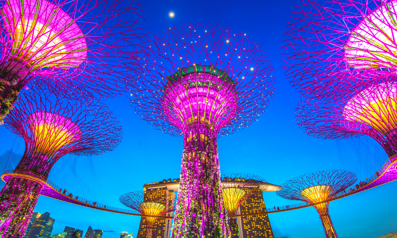 Skygarden trees in Singapore